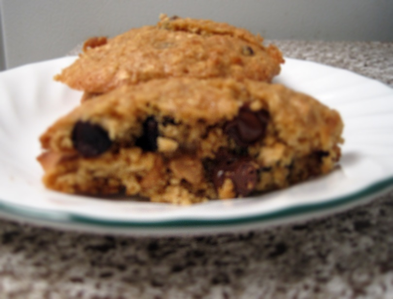 Oatmeal Peanut Butter Chocolate Chip Cookies3