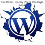 wordpress-20141