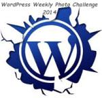 wordpress-20141
