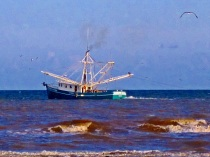 fishing boat on the go