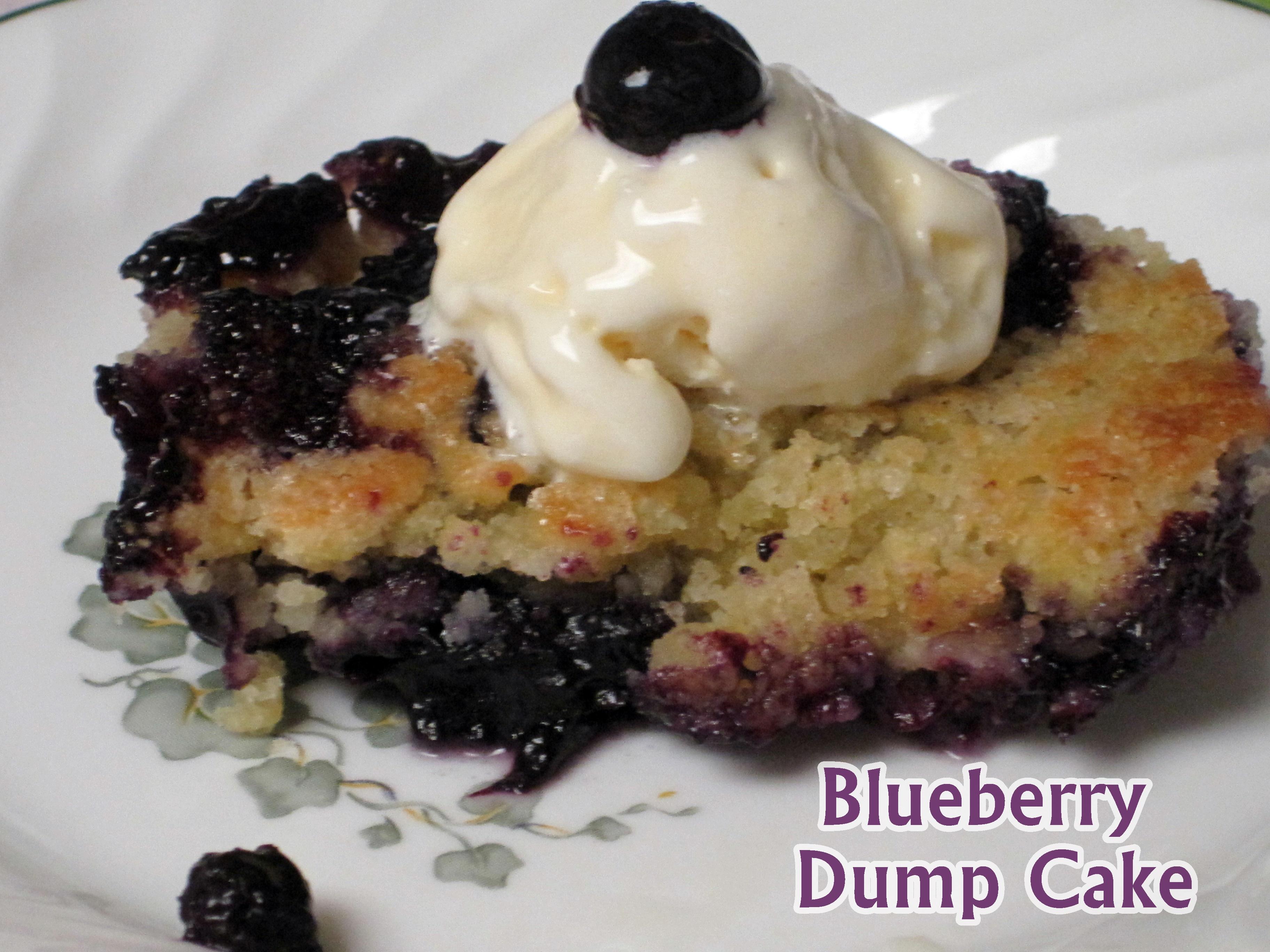 Dump Cake Using Fresh Blueberries