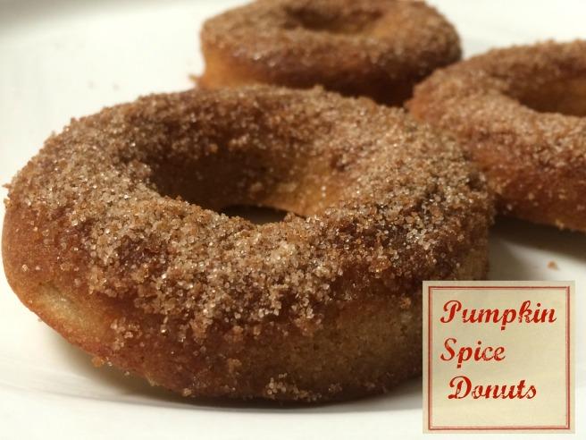 019.pumpkin spice donuts